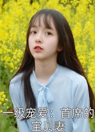 一级宠爱:首席的宝贝妻小说