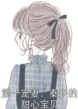 第一宠妻:秦少的甜心宝贝小说