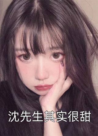 沈先生其实很甜小说