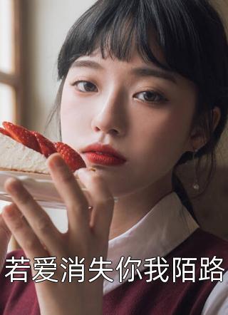 若爱消失你我陌路小说