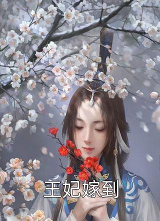 王妃嫁到小说