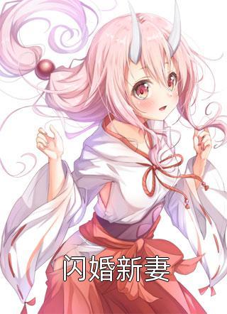闪婚新妻小说