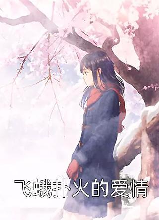 飞蛾扑火的爱情小说