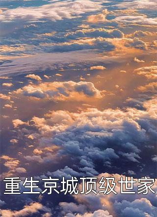 重生京城顶级世家小说