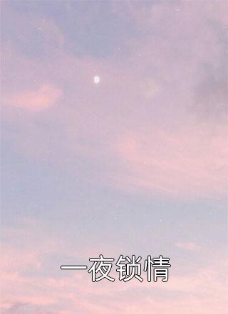 一夜锁情小说